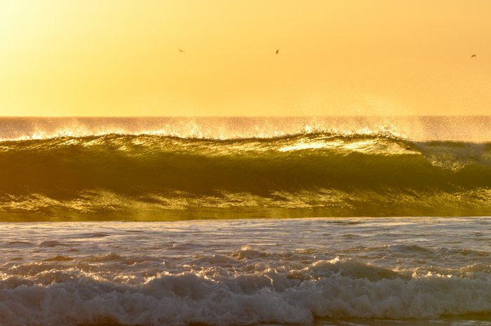 yellow cali sunset surf